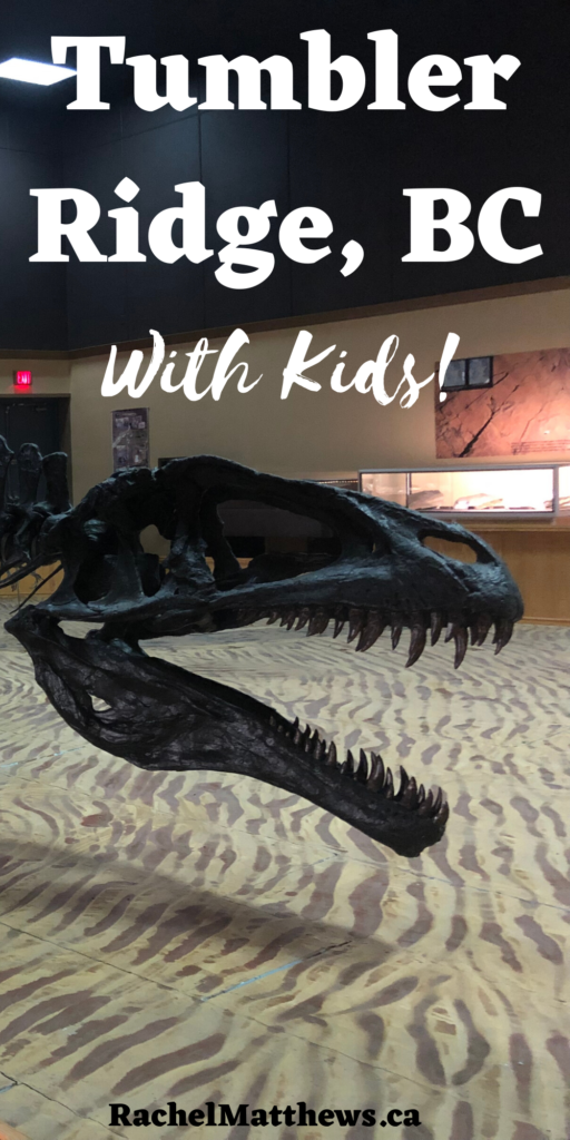 Taking the family to Tumbler Ridge, British Colombia?  Don't miss out on seeing dinosaur fossils at the Discovery Centre, hike in to various waterfalls, and see dinosaur footprints embedded in the rock!