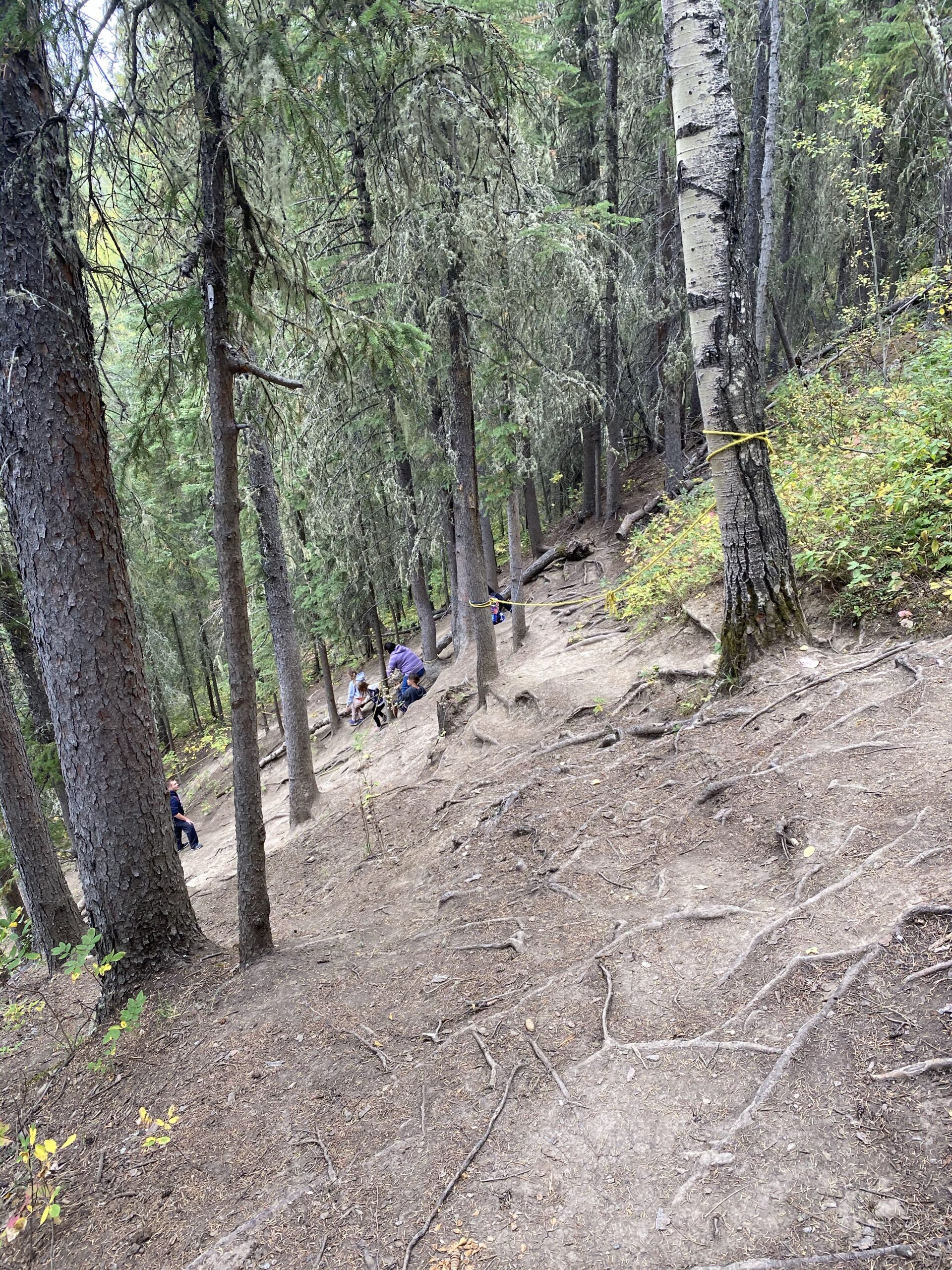 Steep section of Red Willow Falls Trail